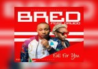NEW VIDEO: B-Red ft Davido – Fall For You