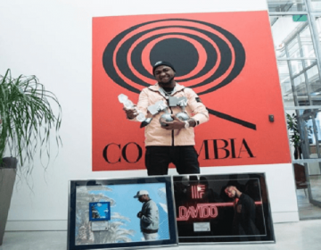 Davido Celebrates as His Songs, 'If' and 'Fall' Go Diamond and Platinum